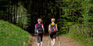 buty do nordic walking
